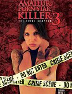 Убийца порнозвезды-любительницы 3: Последняя глава (видео)