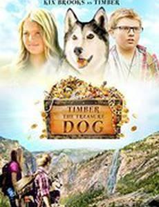 Тимбер – говорящая собака