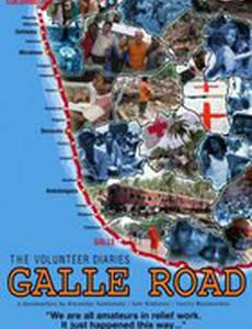 Дорога на Галле – дневник добровольцев
