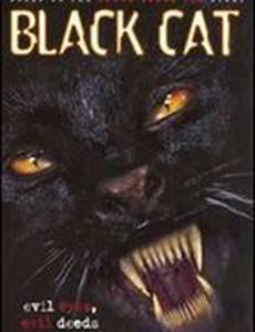 Черная кошка (видео)