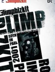 Limp Bizkit: Rock in the Park (видео)
