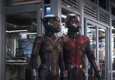 Премьера трейлера: «Человек-муравей и Оса»