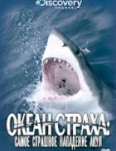 Discovery: Океан страха. Самое страшное нападение акул