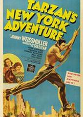 Приключения Тарзана в Нью-Йорке