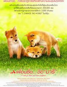 История Мари и трех щенков