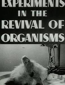 Эксперименты по оживлению организмов