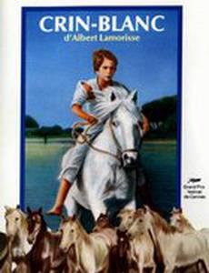 Белая грива: Дикая лошадь