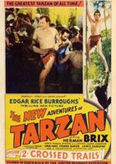 Новые приключения Тарзана