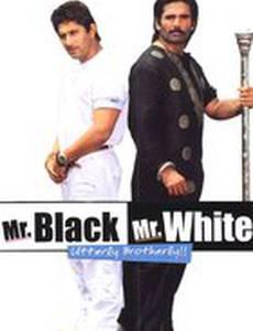 Мистер Уайт и мистер Блэк
