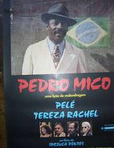Pedro Mico