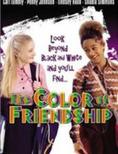 Все цвета дружбы