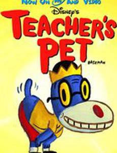 Любимчик учителей