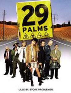 29 пальм