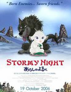 Ночная буря