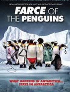 Фарс пингвинов (видео)