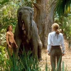 """Кадр из фильма """"Джордж из джунглей"""" - 1"""