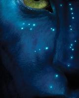 "Постер из фильма ""Аватар"" - 4"