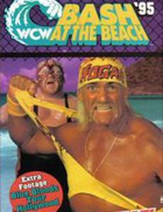 WCW Разборка на пляже