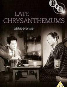 Поздние хризантемы