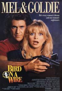 Постер Птичка на проводе