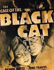 Дело о черном коте