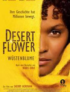 Цветок пустыни