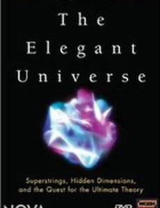Элегантная вселенная (мини-сериал)