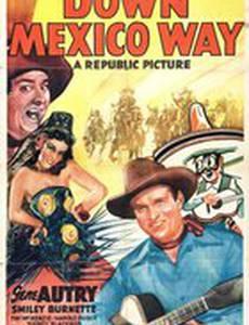 На пути в Мексику