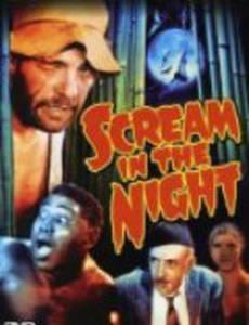 Ночной крик