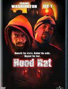Крысы (видео)