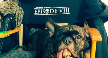 Восьмой эпизод «Звездных войн» получил рабочее название