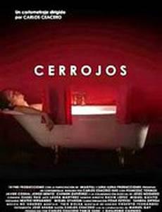 Cerrojos
