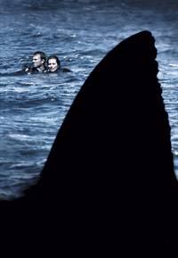 Постер Открытое море