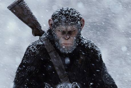 Стоит ли смотреть: «Война за планету обезьян»