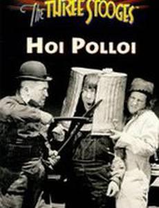 Хой Поллуй