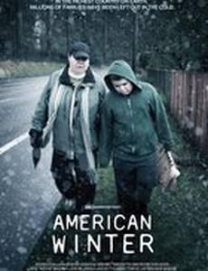 Американская зима