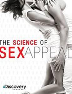 Discovery: Наука сексуальной привлекательности
