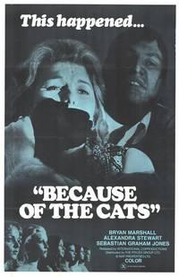Постер Из-за кошек