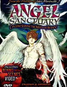 Убежище ангела (видео)