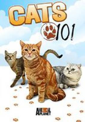 Энциклопедия кошек