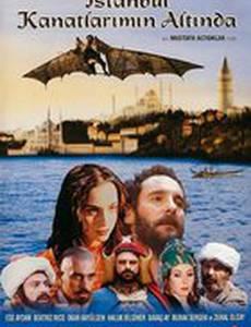 Стамбул под крыльями
