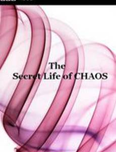 BBC: Тайная жизнь хаоса