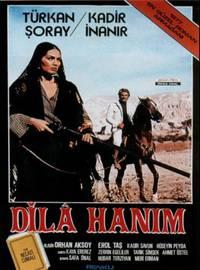 Постер Dilâ hanim