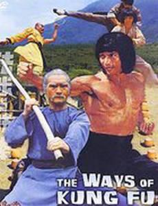 Разные пути кунг-фу