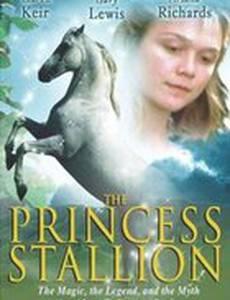 Принцесса: Легенда белой лошади