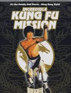 Невероятная миссия Кунг-фу