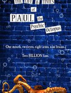 Жизнь и злоключения Пауля, осминога-оракула