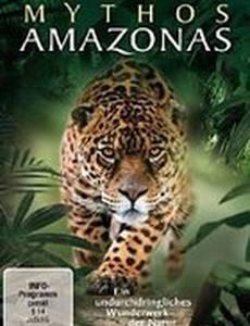 Мифы Амазонки
