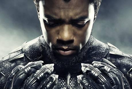 Звезда «Черной Пантеры» снимется в экшен-триллере о захвате самолета