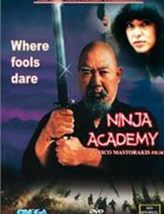 Академия ниндзя